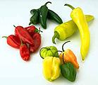 Acelerar el Metabolismo - Aceleradores Naturales..