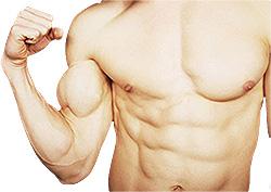 Comemos dieta para bajar de peso vegetariana deben sustituir
