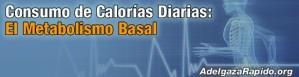Consumo de Calorías Diarias: El Metabolismo Basal..